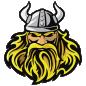 Vikingas avataras